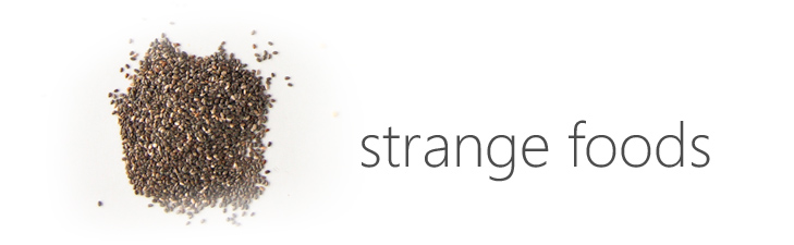 strange-foods-blog-header