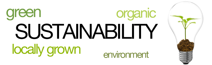 sustainability-brian-zehetner-anytimehealth